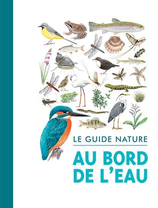 Le Guide Nature Au Bord De L'eau - Salamandre