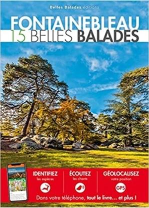 Fontainebleau 15 belles balades