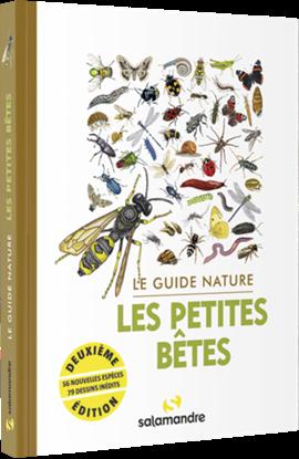 Le Guide Nature Les petites bêtes - Salamandre