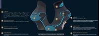 Fiche Technique-246-005-Socquette-Tige Basse_Double_EVO_Polyamide noir-bleu